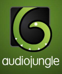 Mua bán get audiojungle giá cực rẻ